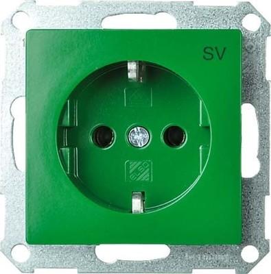 Elso Steckdoseneinsatz gn mit Aufdruck SV 265117