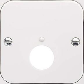 Elso Zentralplatte DIN Stecker perlweiß 203400
