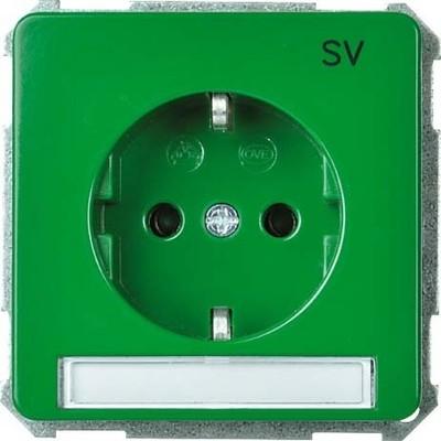 Elso UP-Steckdoseneinsatz grün 205167