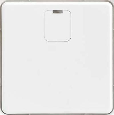 Elso Zentralplatte Trennrelais grau 207081