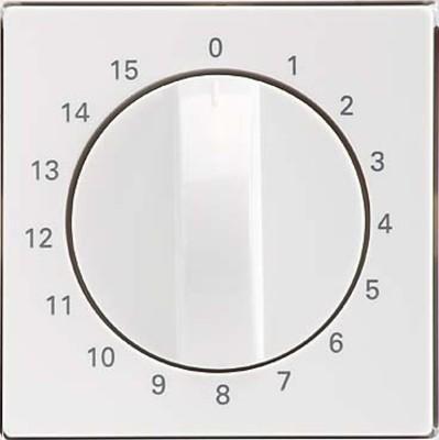 Elso Zentralplatte Zeitschalter reinweiß 223084