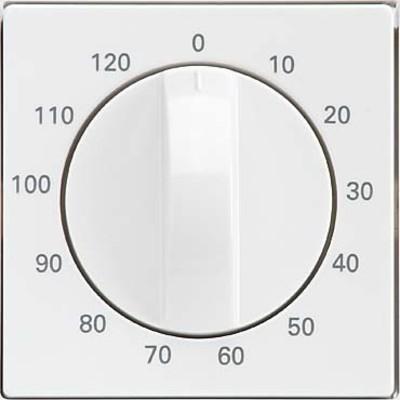 Elso Zentralplatte Zeitschalter reinweiß 223090