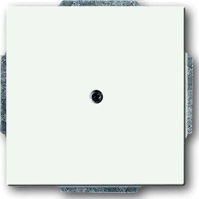 Busch-Jaeger Zentralscheibe weiß Blindabd,m.Tragring 1742-884