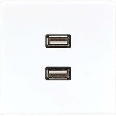 Jung Multimedia-Anschluss weiß 2 x USB m.Tragring MA LS 1153