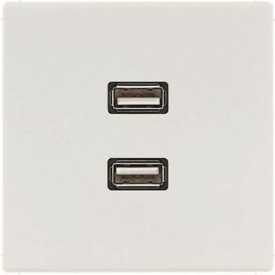 Jung Multimedia-Anschluss lichtgrau 2 x USB m.Tragring MA LS 1153 LG