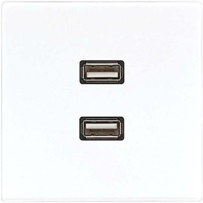 Jung Multimedia-Anschluss alpinweiß 2 x USB m.Tragring MA LS 1153 WW