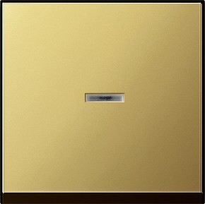 Gira Wippe Kontrollfenster ms System 55 0290604