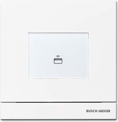 Busch-Jaeger Zutrittskontrolle außen studioweiß-mt Transp 83100/72-664