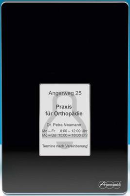 Auerswald Türfreisprechsystem schwarz TFS-Dialog 400 sw