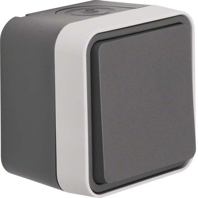 Berker Wechselschalter AP grau 30763505