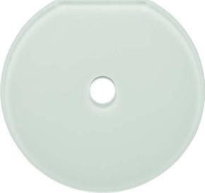 Berker Glas-Endplatte Schalter Serie Glas pws 109409