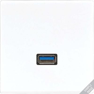 Jung USB-Tragring Schraubbefestigung MA LS 1123 SW