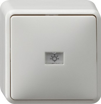 Gira Wechseltaster reinweiß AP 015613
