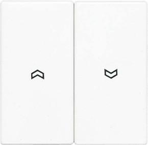 Jung Wippe Symbole lichtgrau für Taster LS 995 P LG