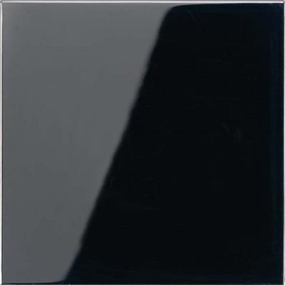 Jung Wippe schwarz für Taster LS 990 SW