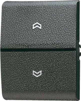 Jung Wippe Symbole/Lichtleiter für Taster 800 P
