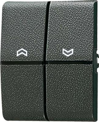 Jung Wippe Symbole/Lichtleiter für Taster 805 P