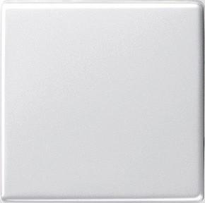 Gira Wippe Wechselsch. reinweiß-glänzend System55 029603