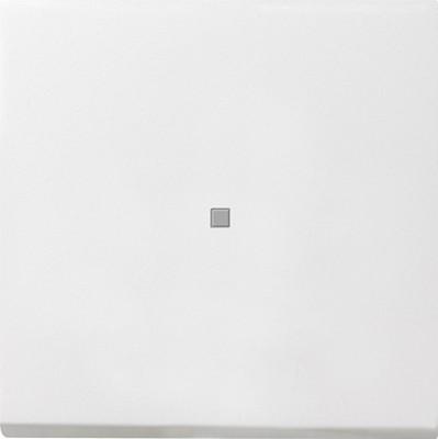 Gira Wippe Kontroll. reinweiß-glänzend 0290112