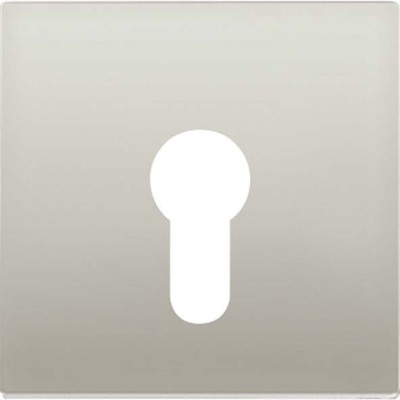 Jung Abdeckung Mess/clas f. Schlüsselschalter ME 2925 C