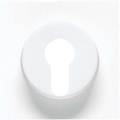 Jung Abdeckung Mess/antik f. Schlüsselschalter ME 2928 AT