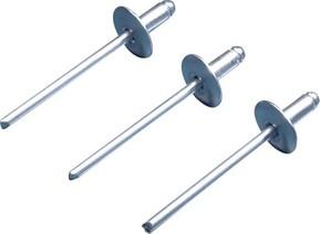 Rittal Aluminium-Niet TS 8800.531(VE100)